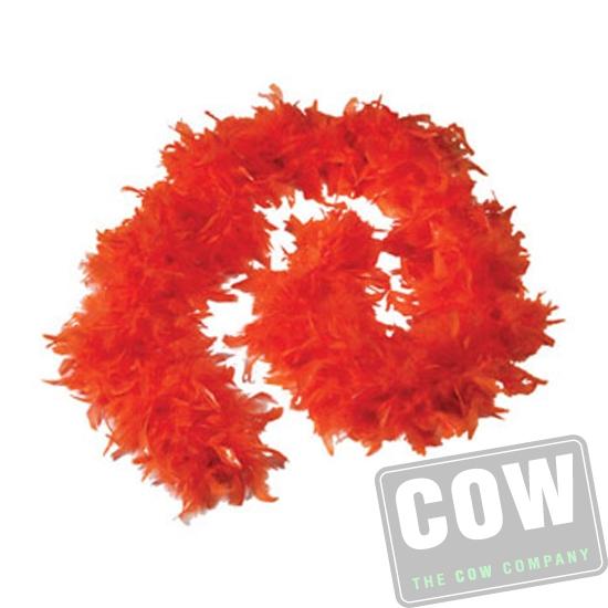 COW0119 Boa