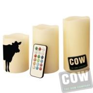 COW0134_kaarsen