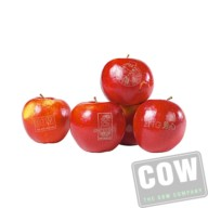 COW0251_fruit-logo_2