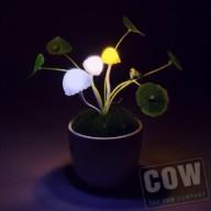 COW_Solar light mushroom desktop