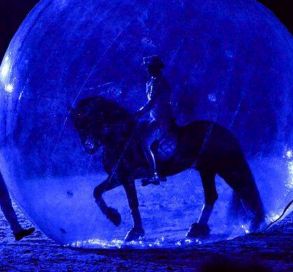 horse in a bubble