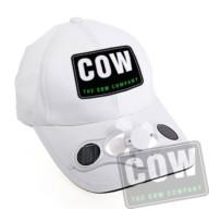 COW_1334_Solar6