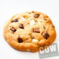 cow_koekjespotten-2