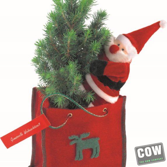 kerstboompje in vilten tas