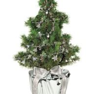 4127 Kerstboompje met zilveren sterretjes