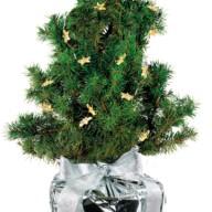 4132 Kerstboompje