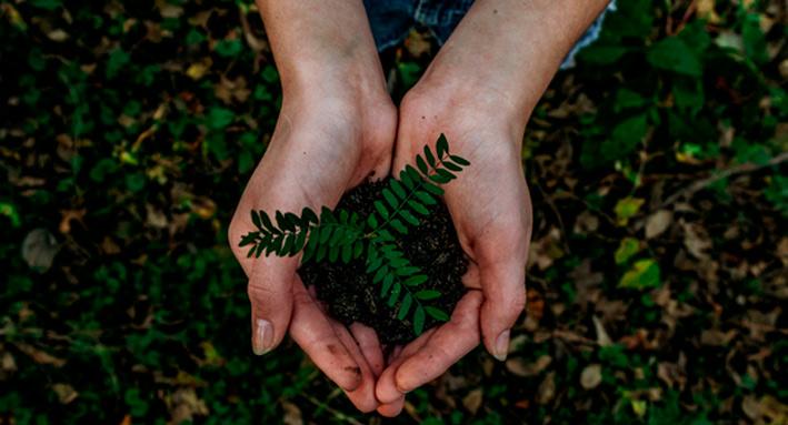 Eco wordt steeds populairder