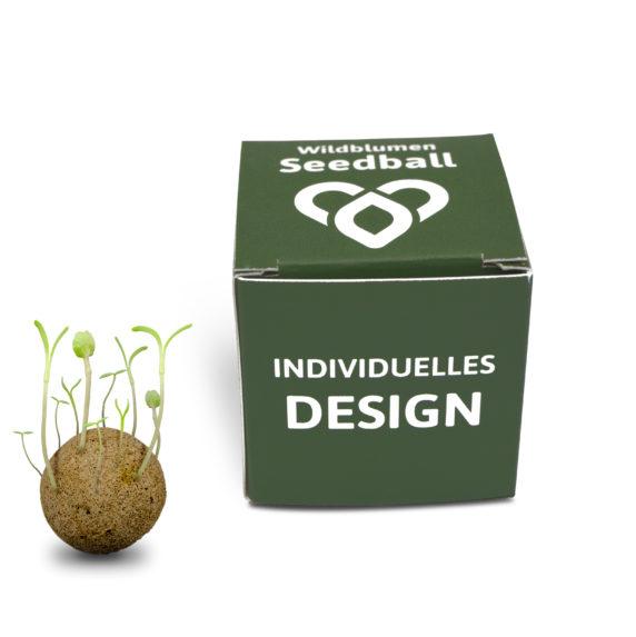 Seedbombs cube